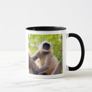 Mug Singe dans la jungle du parc national de