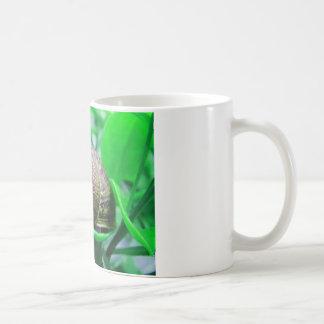 "Mug Solitude (aka ""escargot vert "")"