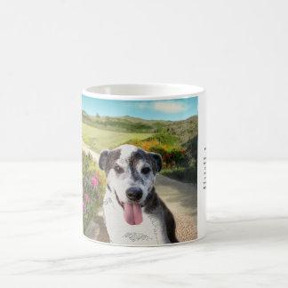 Mug Tarte dans un domaine des dahlias (chien sur la