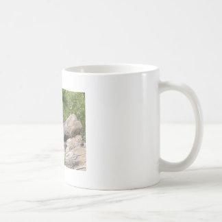 Mug Thé de gorilles