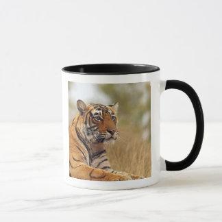 Mug Tigre de Bengale royal - une fin, Ranthambhor