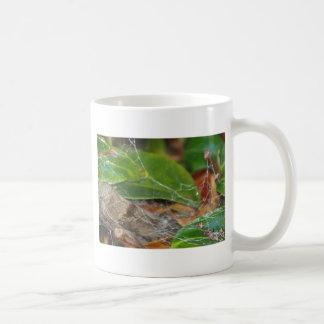 Mug toile d'araignée