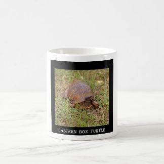 Mug Tortue de boîte orientale (la Caroline du Nord et