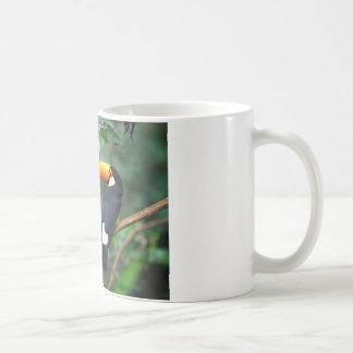 Mug Toucan de Toco