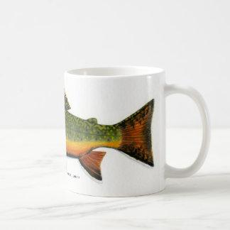 Mug Truite de ruisseau   …
