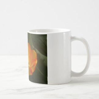 Mug Tulipes dans Sun
