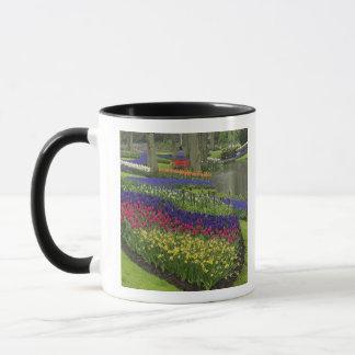 Mug Tulipes, jacinthe de raisin, et jonquilles,
