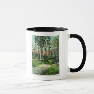 Mug Un arbre tombé à la scène de parc de région boisée