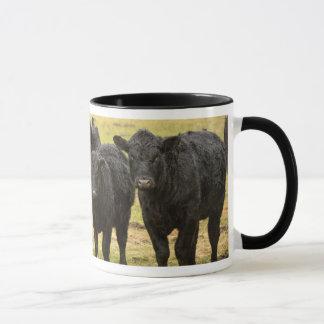 Mug Vaches sous la pluie