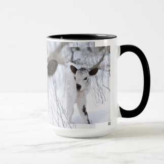 Mug veau noir et blanc de bébé dans la neige