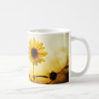 """Mug """"Vient ici le Sun """""""