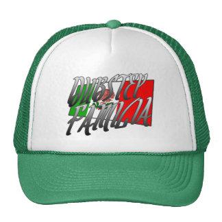 MX DUBSTEP de camiseta du Mexique Dubstep Familia Casquette De Camionneur