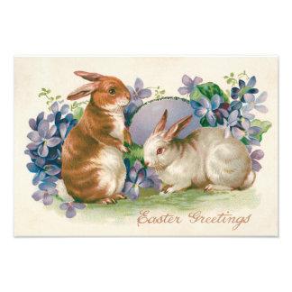 Myosotis coloré d'oeufs de lapin de Pâques Photos Sur Toile