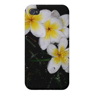 Natation dans les produits de Mulit de pluie Coque iPhone 4/4S