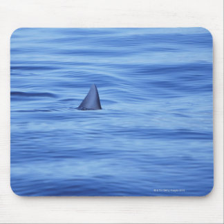 Natation de requin dans l'eau d'océan tapis de souris