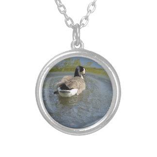 Natation d'oie de faune dans le lac, cercle de pendentifs