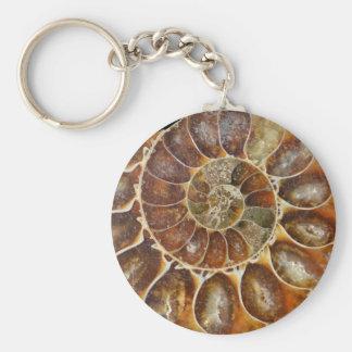 nature animale d'escargot de noir fossile porte-clé rond