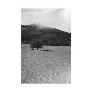 Nature en noir et blanc toiles