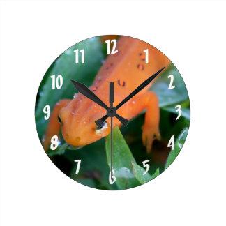 Nature orange rouge de salamandre d'Eft Horloge Ronde