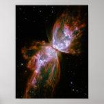 Nébuleuse de papillon/insecte (télescope de Hubble Affiche