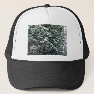 Neige sur un arbre de houx casquette