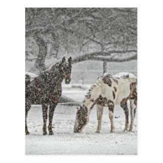 neigeux d'animaux de ranch de ferme de neige carte postale