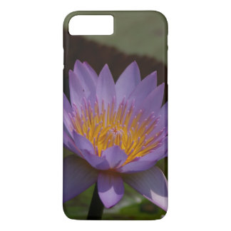 Nénuphar pourpre de Lotus Coque iPhone 7 Plus
