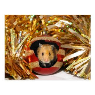 Noël de hamster cartes postales