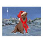 Noël de labrador retriever de chocolat cartes postales