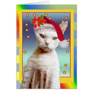 Noël de Meow de Père Noël de chat de la carte |