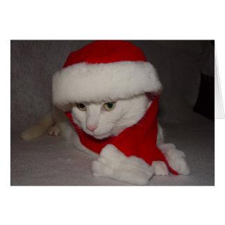 Noël Kitty Carte