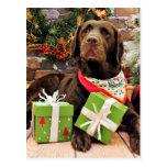 Noël - Labrador - Madame Cartes Postales