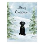 Noël noir de laboratoire cartes postales