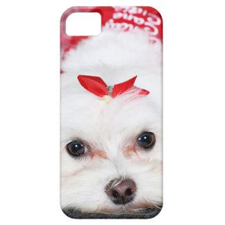 Noël - Tinkerbell - maltais Coque iPhone 5