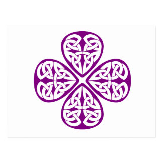 noeud pourpre de celtic de shamrock carte postale
