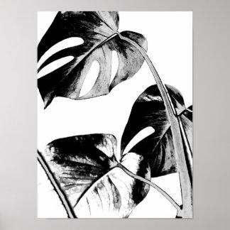 noir et blanc tropical de palmettes de monstera