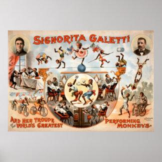 Non mes singes non mon poster vintage de cirque