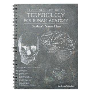 Notes de classe et de laboratoire - terminologie carnets