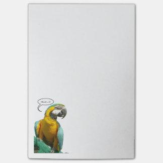 Notes drôles de perroquet parlant