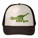 N'oubliez jamais les dinosaures casquette