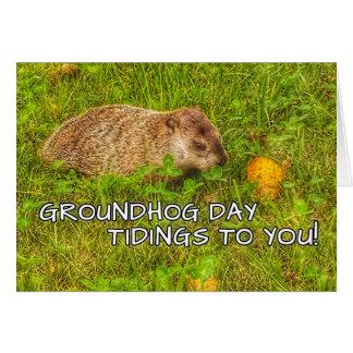 Nouvelles de jour de Groundhog à vous ! cartes de