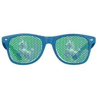 Nuances de lunettes de soleil de licorne