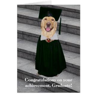 Obtention du diplôme mignonne/drôle carte de vœux