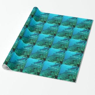 océan marin de poissons de dauphin sous le bain de papier cadeau
