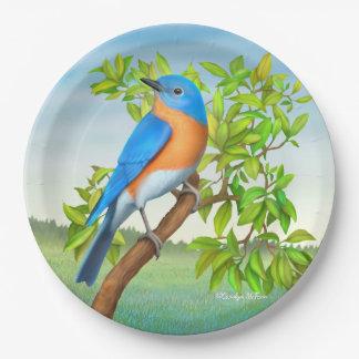 Oiseau bleu oriental dans des plaques à papier assiettes en papier