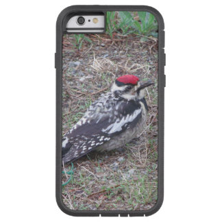 Oiseau Coque iPhone 6 Tough Xtreme