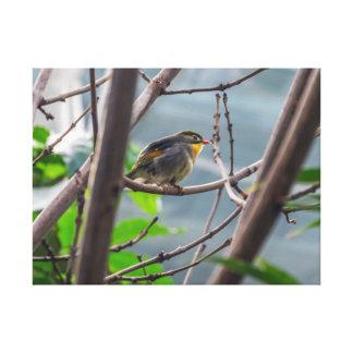 Oiseau dans une copie de toile d'arbre