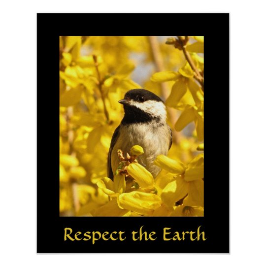 Oiseau de Chickadee de jour de la terre dans la Poster