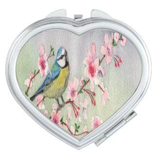 Oiseau de mésange bleue sur la couleur pour