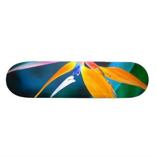 oiseau de planche à roulettes d'Hawaï de paradis Planche À Roulette Customisée